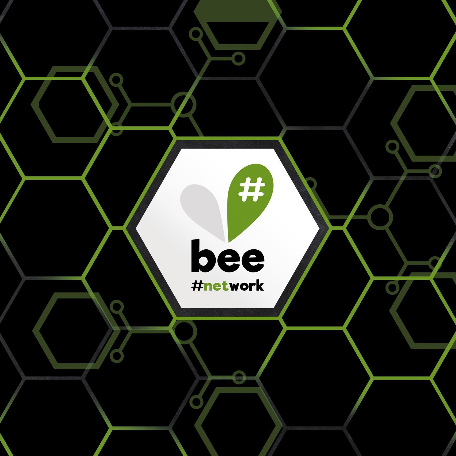 Team bee-my.world